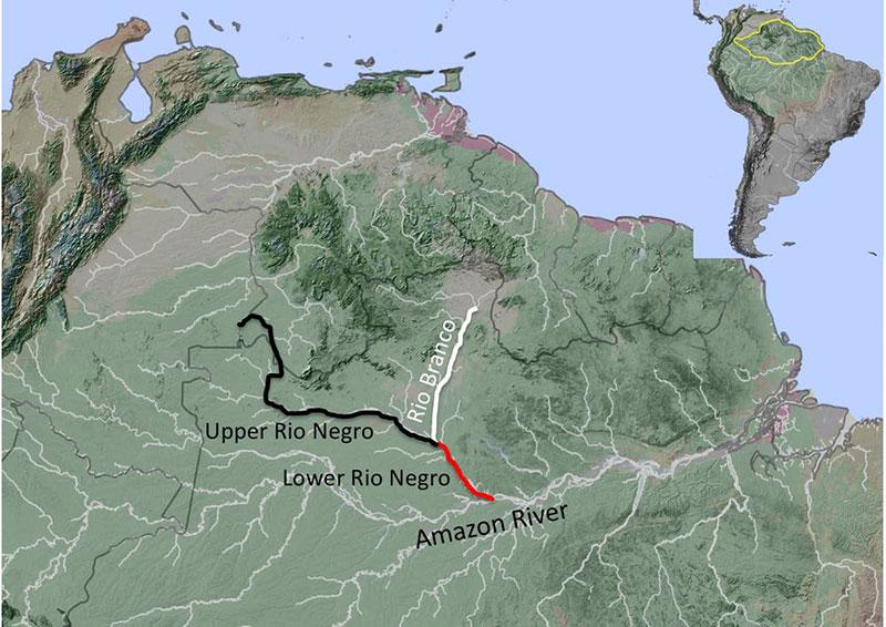 Amazon-map.jpg