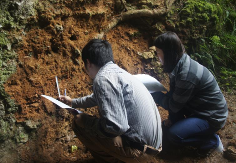 Chinese Excavation