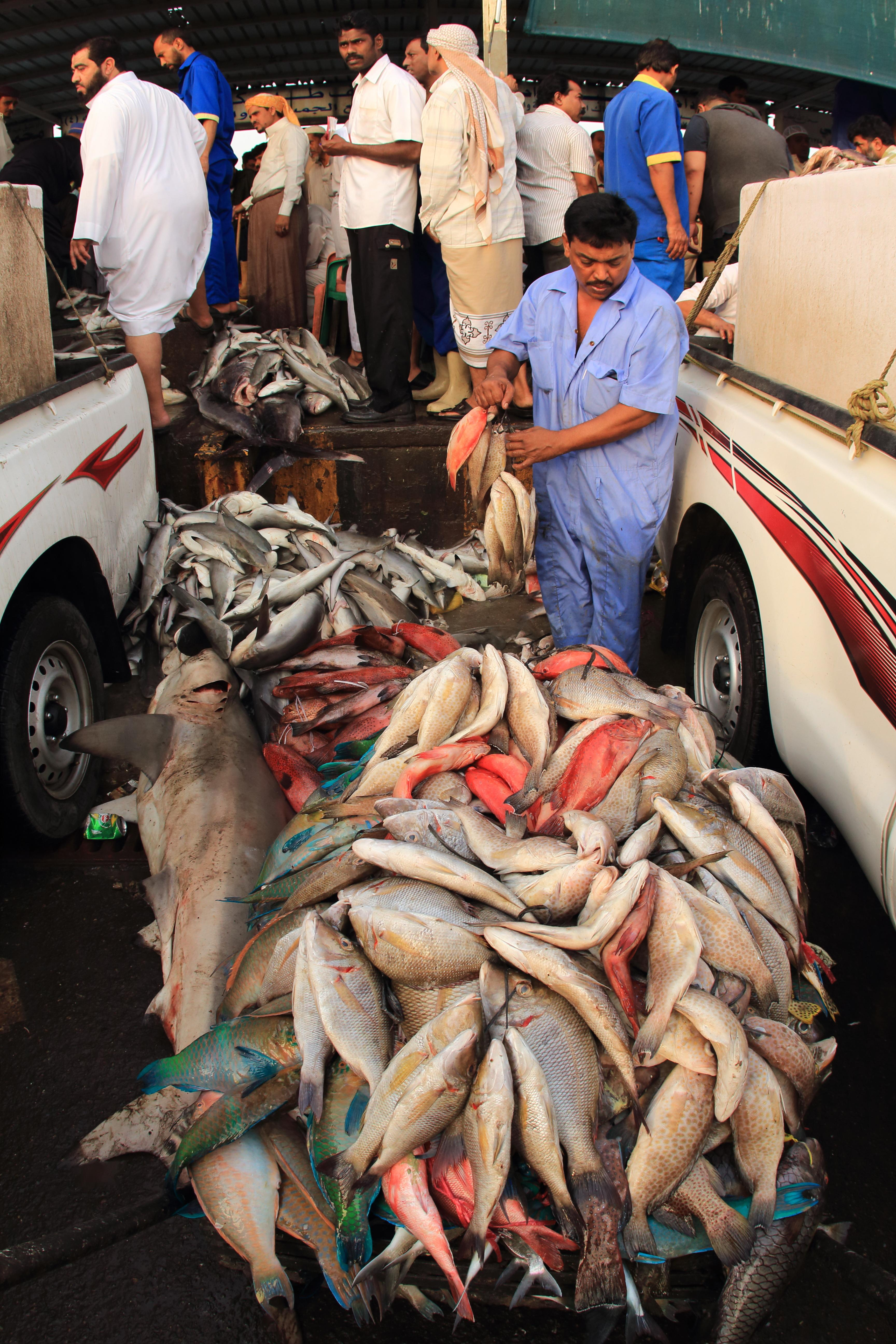 Fish Market Trucks