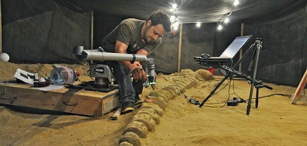 Paleontological work that involves 3D scanning