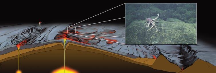 Illustration of a mid-ocean ridge