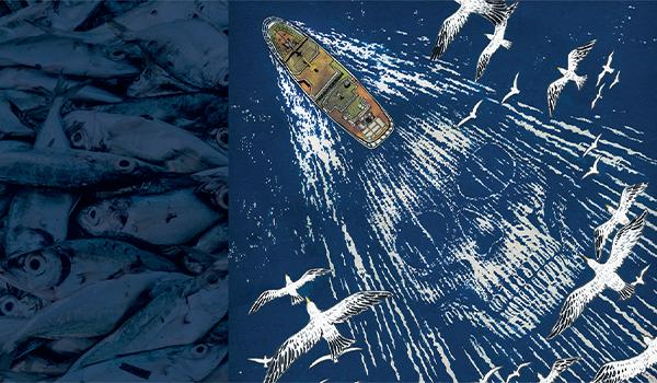 The rusted pirate fishing vessel STS-50 evaded authorities time and time again—until its luck ran out.