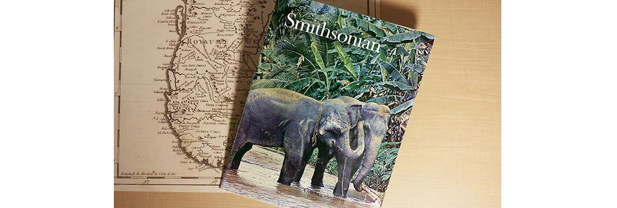 The cover story of the debut issue was about elephant breeding in Sri Lanka.