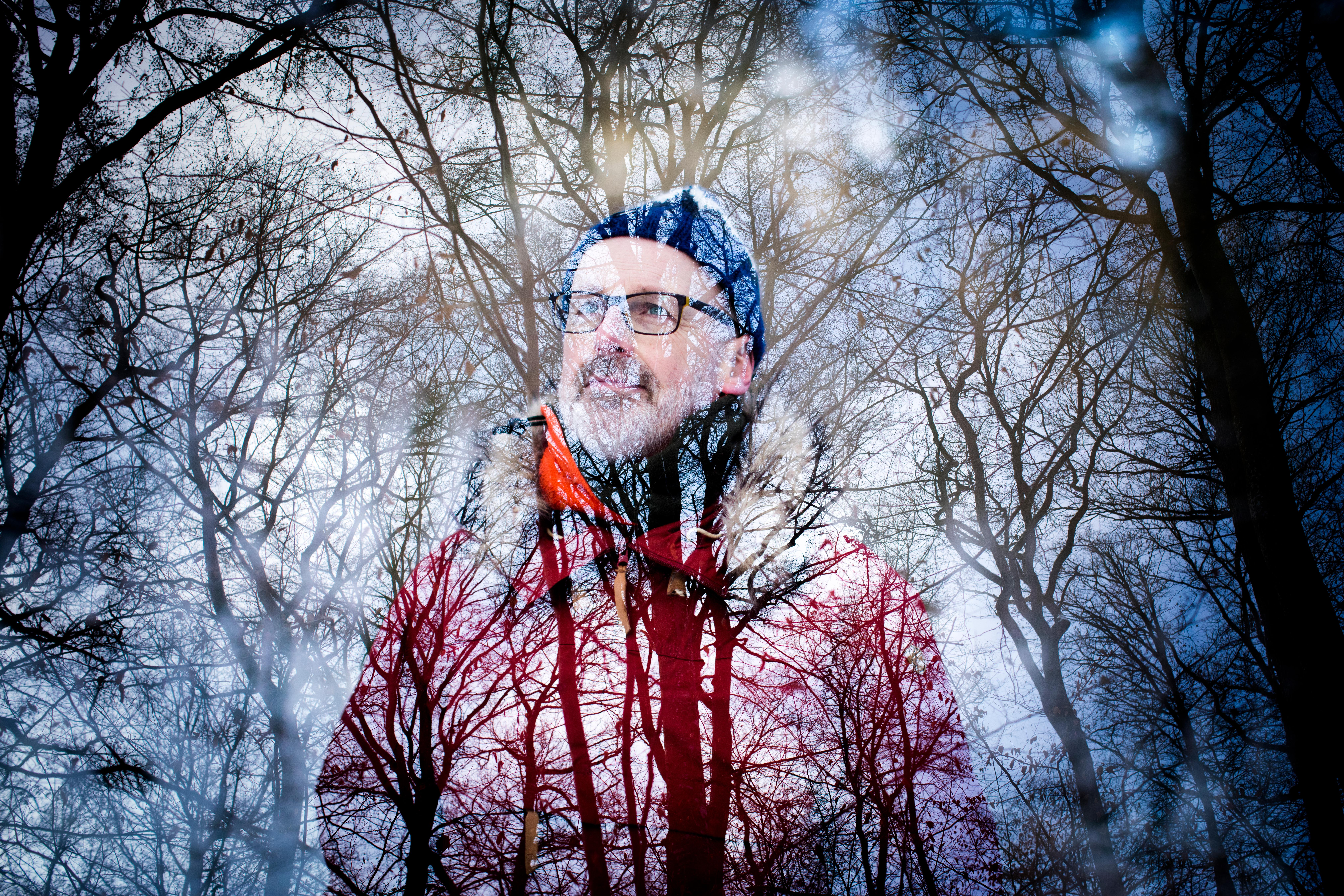 Wohlleben sees a forest as a superorganism