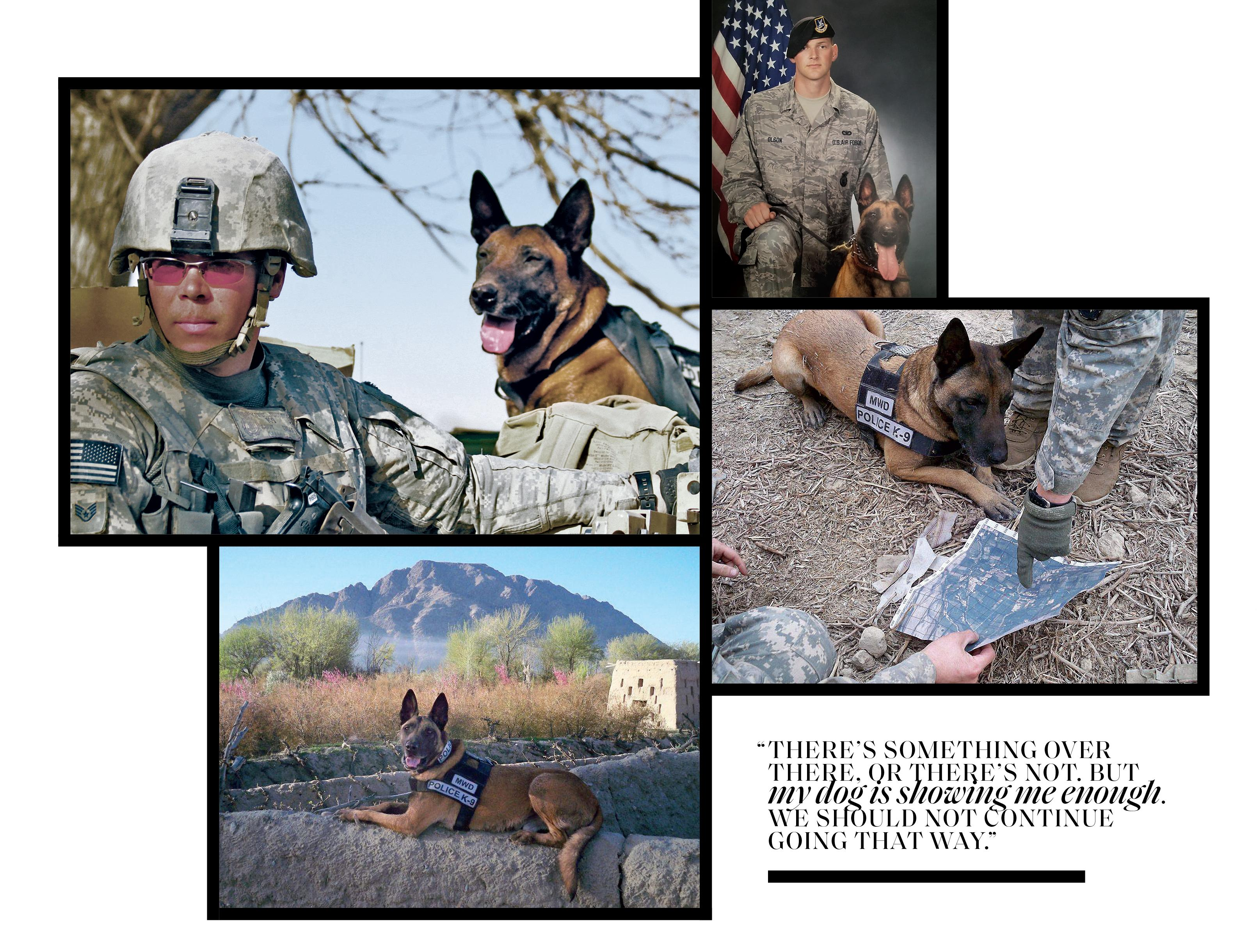 Dyngo working as a war dog collage with pullquote