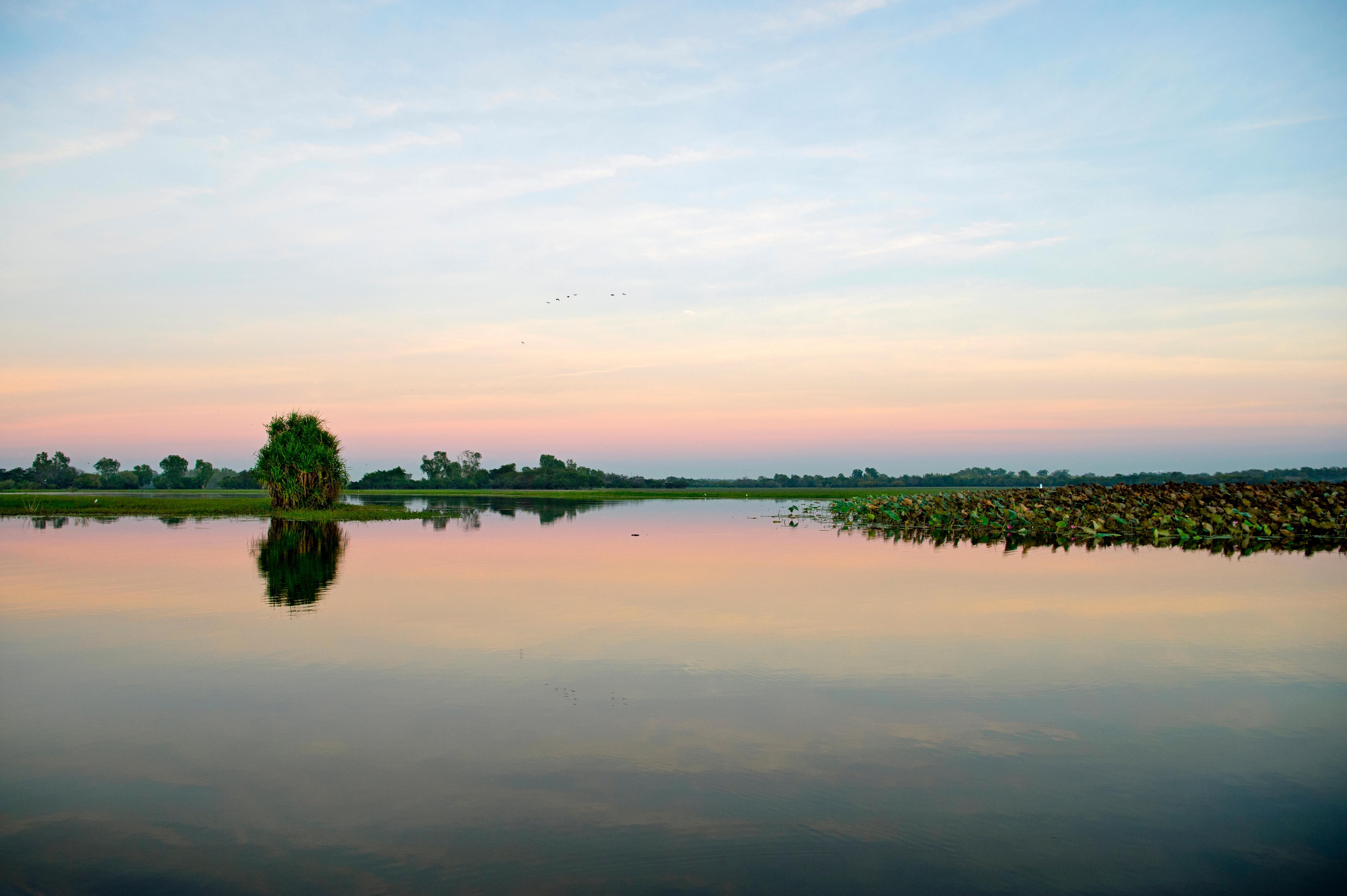 Kakadu Yellow Water.jpg