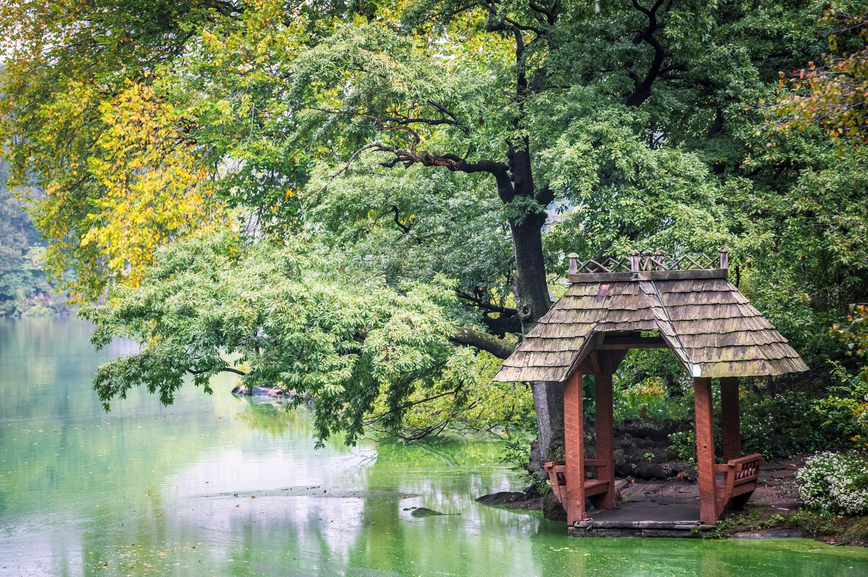 A wooden gazebo on the Lake in Central Park