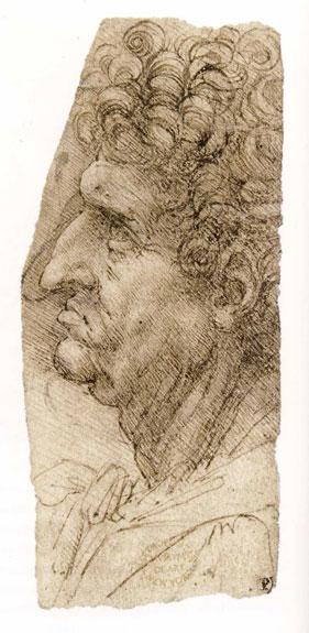 Leonardo da Vinci's Head of a Man in Profile