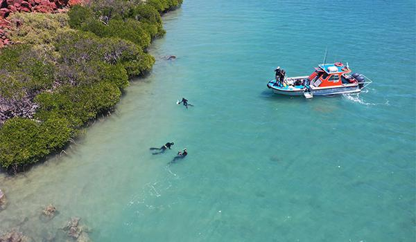 Archaeologists exploring the submerged landscapes of Australia, often called sea country, recently found ancient sites underwater.