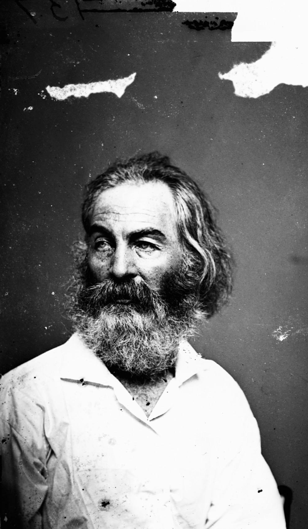 Walt Whitman photo #1425, Walt Whitman image