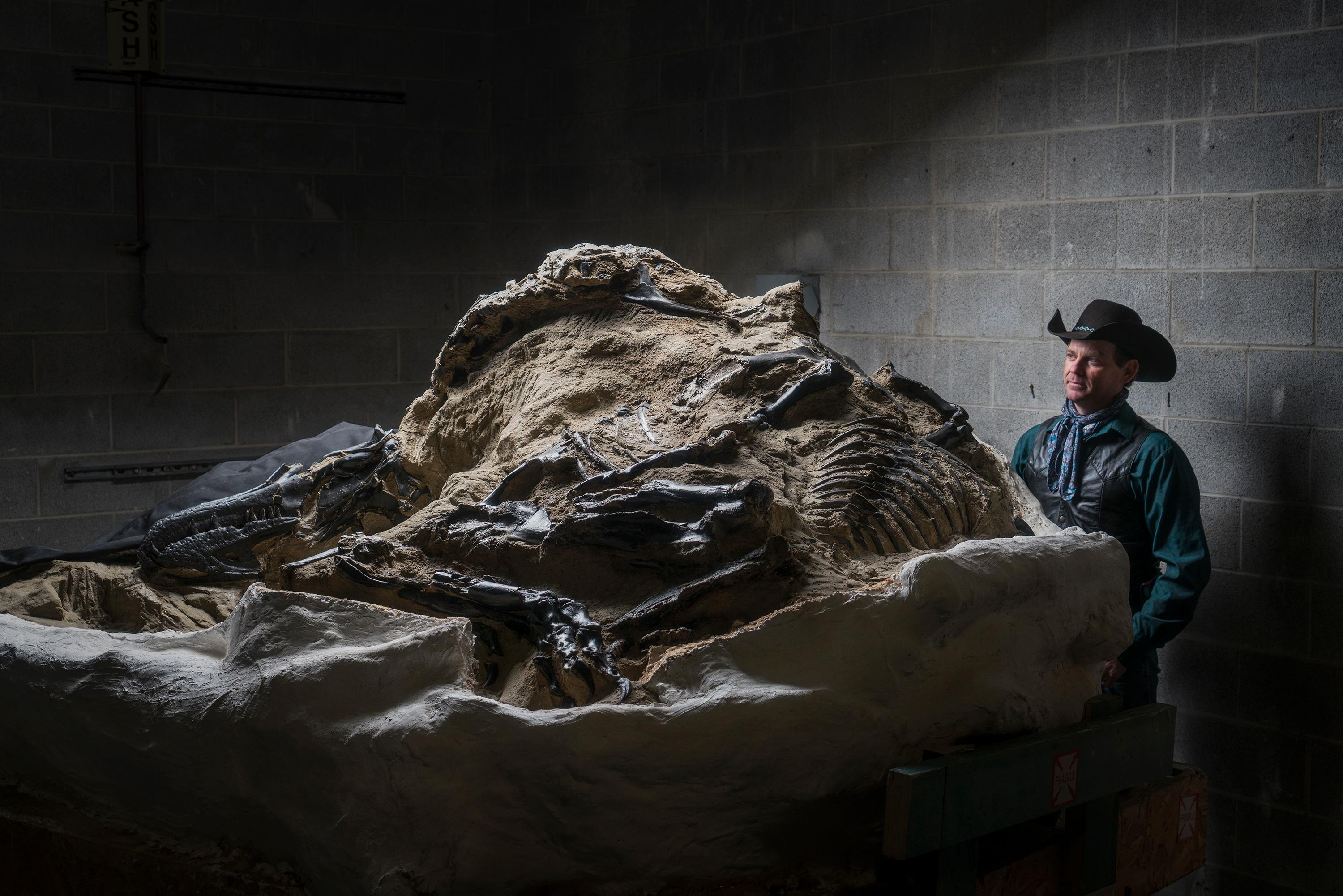 "Clayton Phipps, the ""Dino Cowboy,"" with a section of the Nanotyrannus fossil"