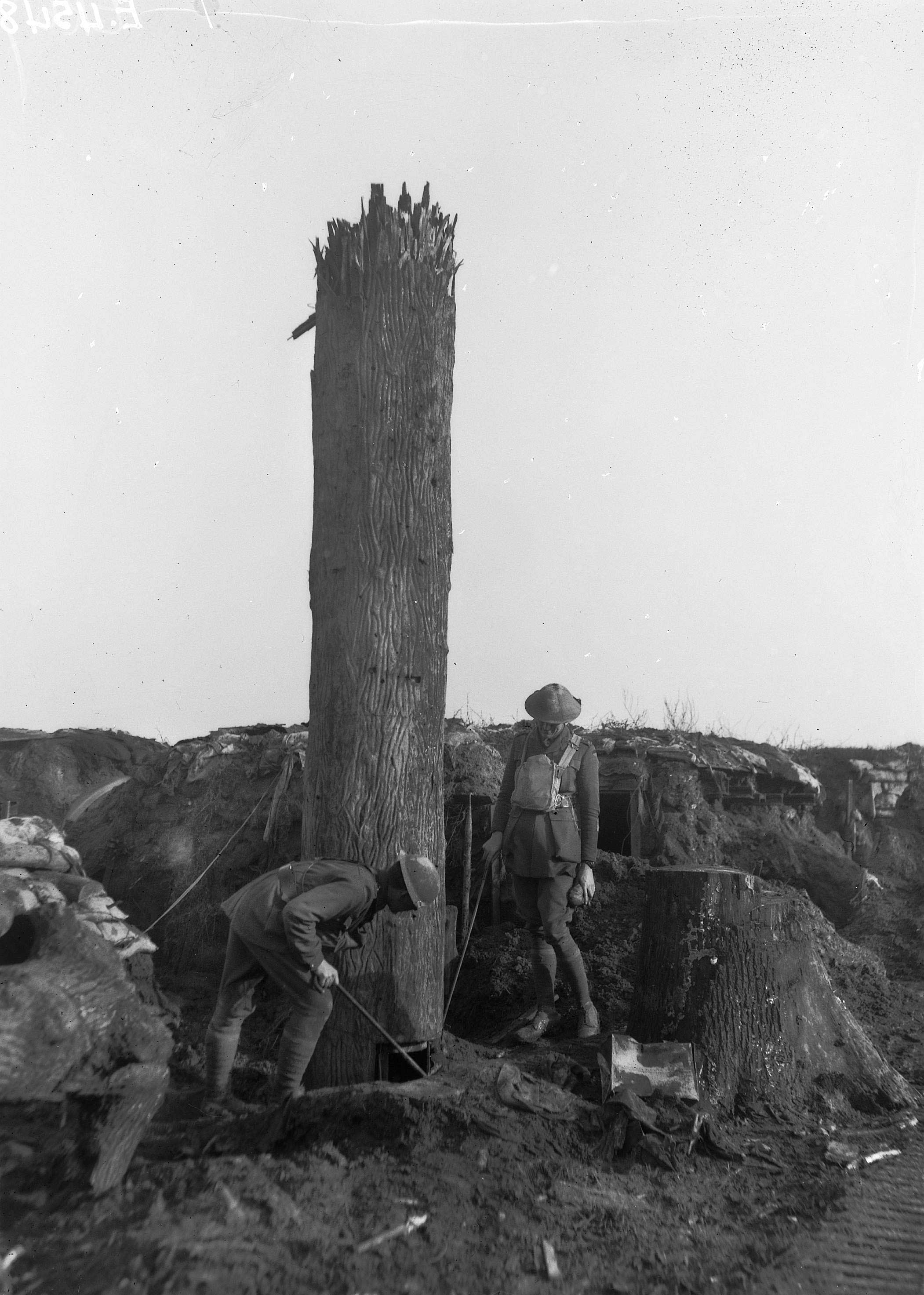Fake Spy Trees Used in WWI
