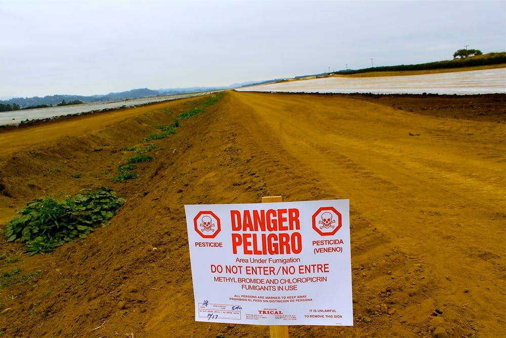 Recently fumigated field in Watsonville, Calif., Oct. 11, 2009