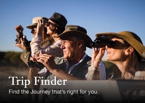 Trip Finder