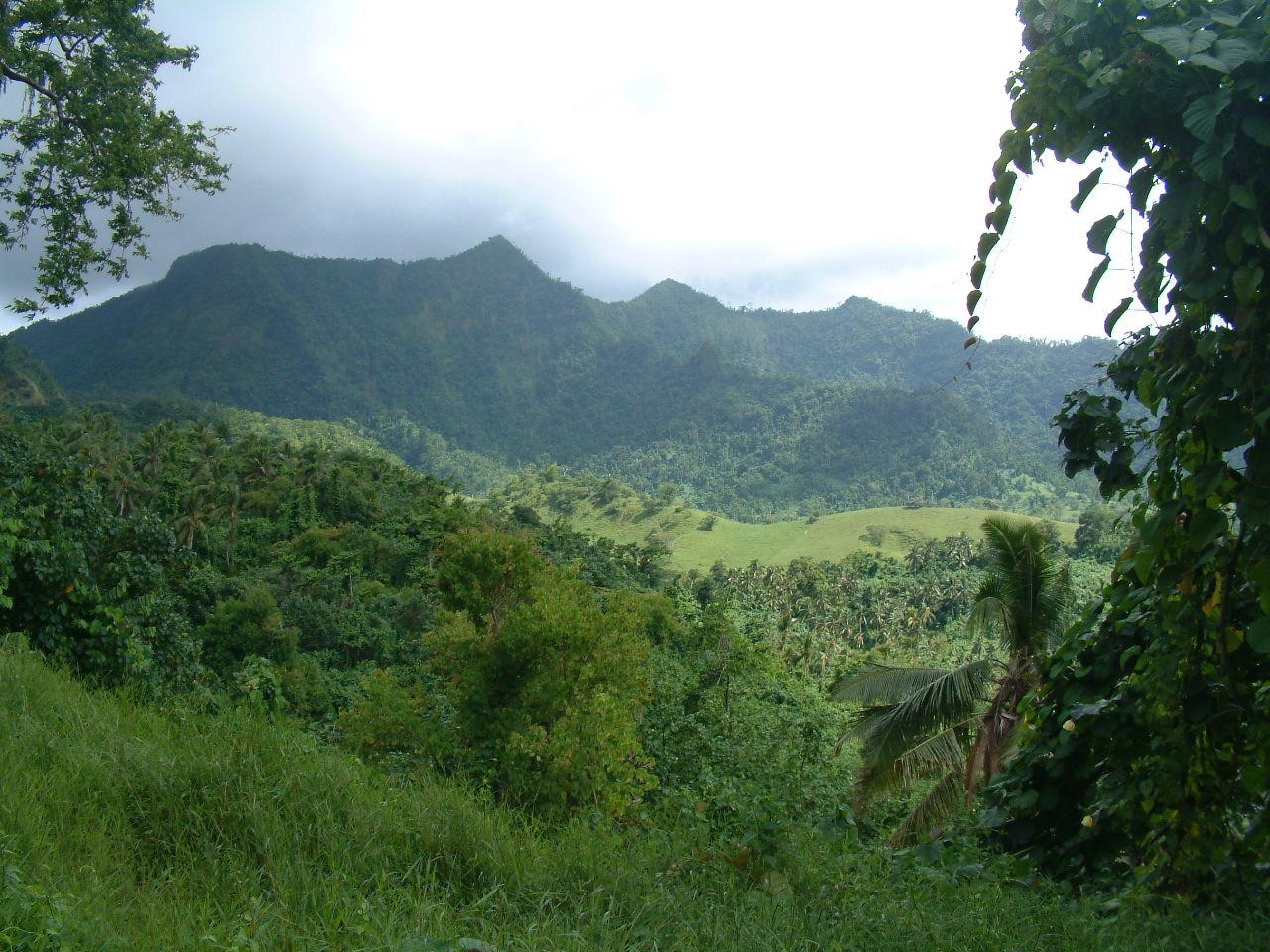 Landscape, `Upolu, Samoa