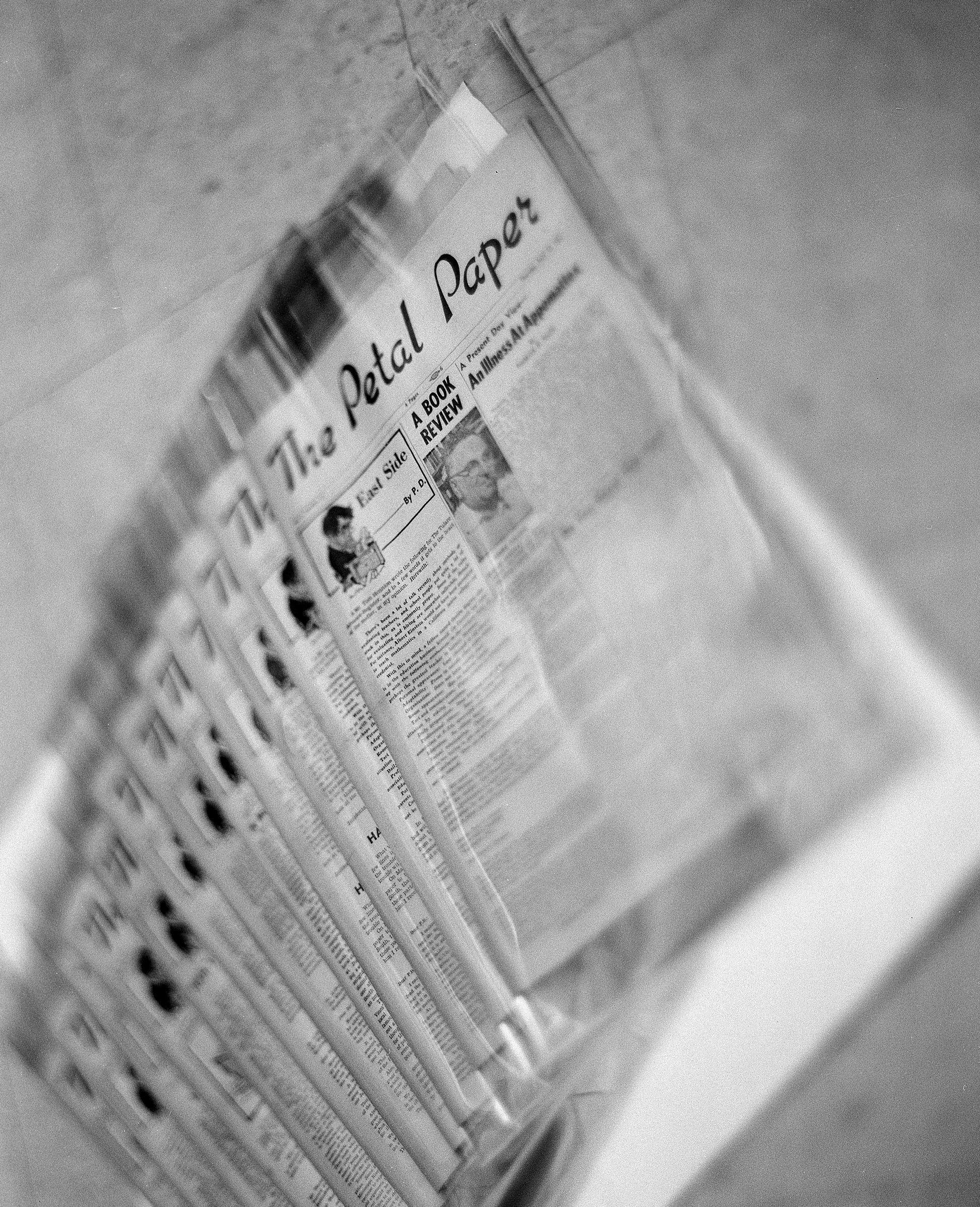 Preserved Petal Paper copies