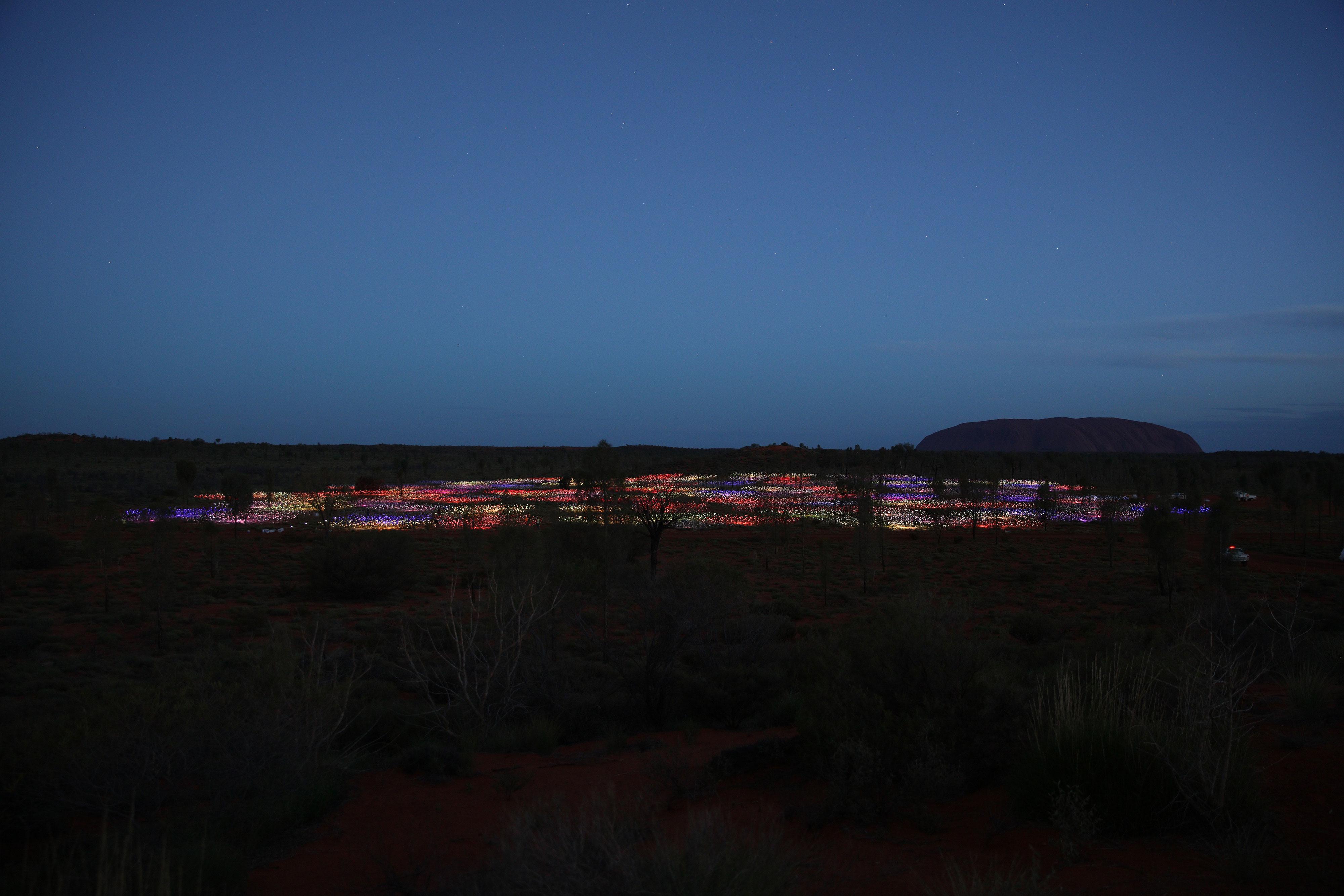Field of Light Distant