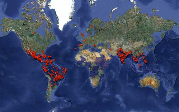 Dengue fever reports around the world