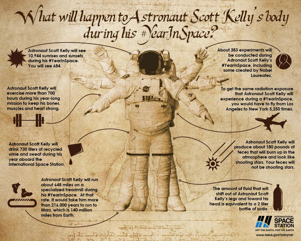 What Happens To The Human Body In Space Science Smithsonian Bones Skeleton How They Work Diagrams 20150914 Web