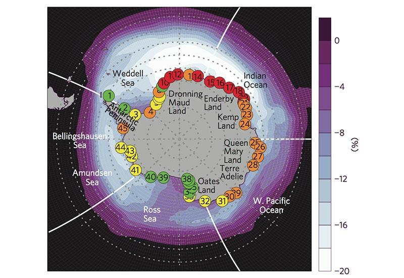 Penguin Colony Map
