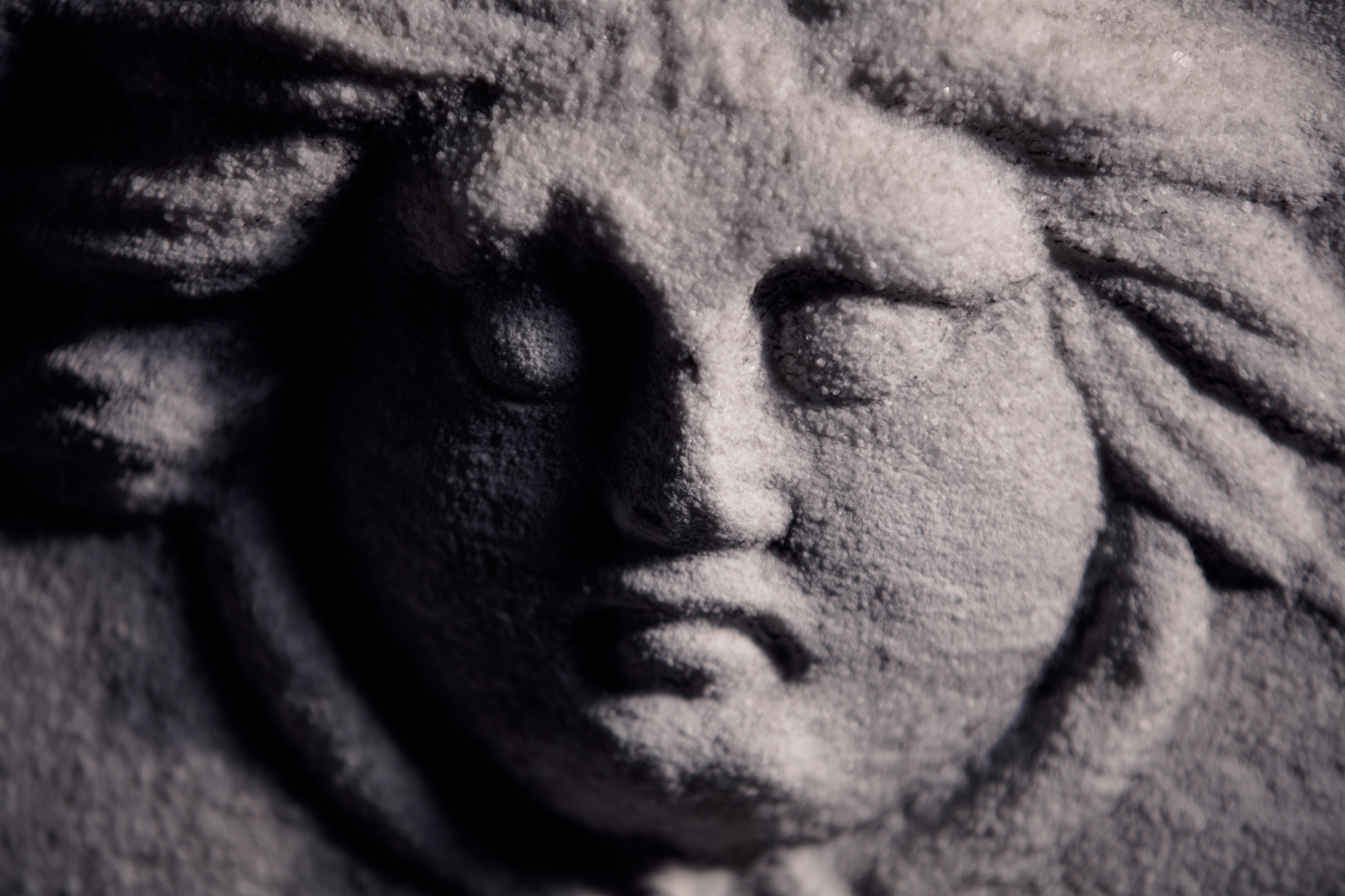 ornate marble sarcophagus