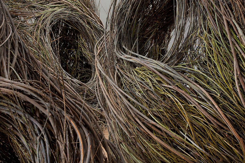 Shindig by Patrick Dougherty, 2015