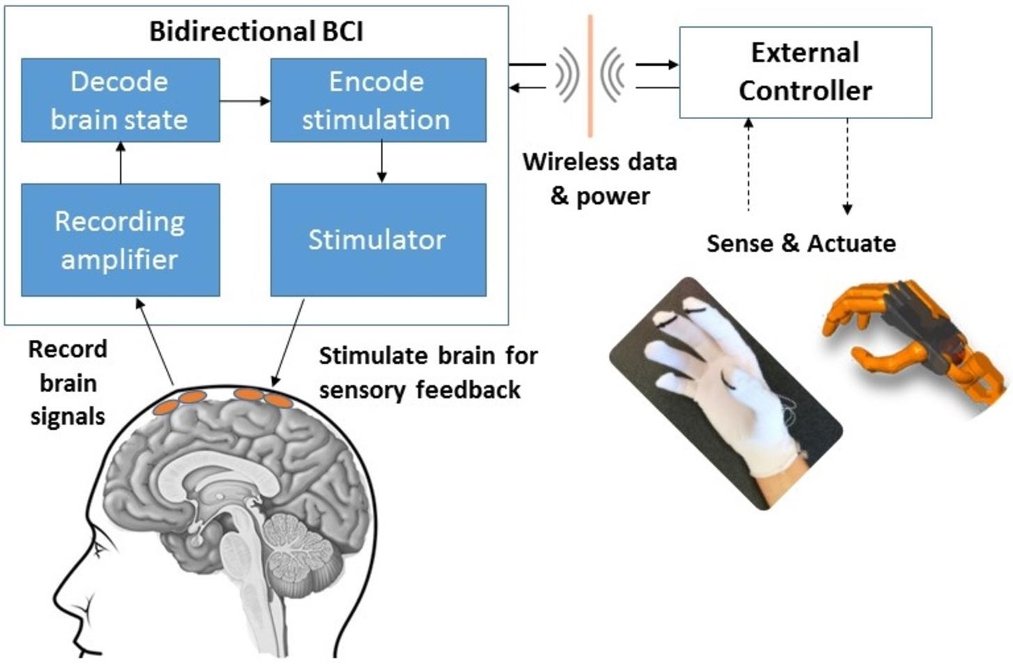 A bidirectional brain-computer interface