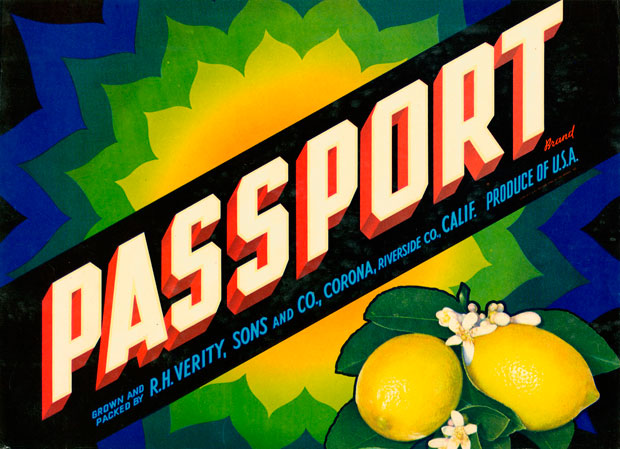passport620.jpg