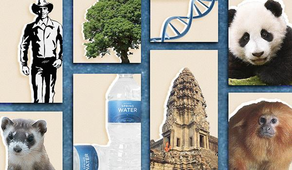 The list covers findings in biology, justice and human rights, the environment, and more.