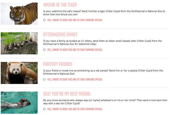 Animal puns are the most romantic gift you can give, according to nine out of ten Zoo creatures.