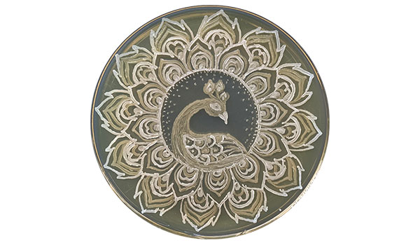 """Balaram Khamari's """"Microbial Peacock"""" won second place in the traditional category in the 2020 American Society for Microbiology Agar Art Contest."""
