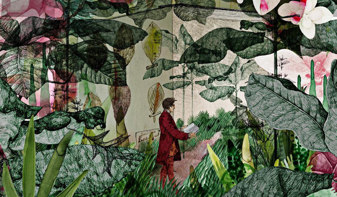 André Michaux, a French botanist, was an ambitious explorer whose legacy has largely been forgotten.