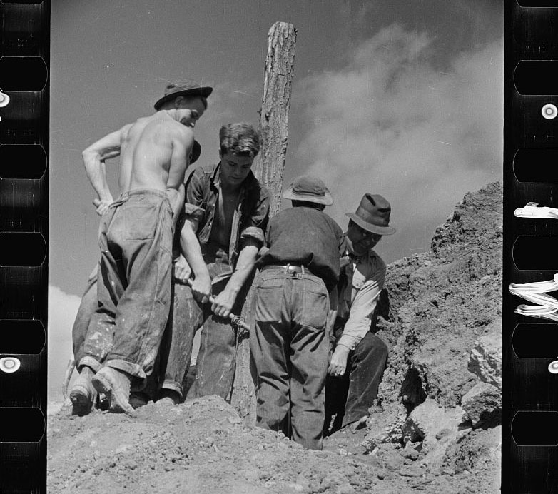 Carl Mydans, crop of CCC (Civilian Conservation Corps) boys at work, Prince George's County, Maryland