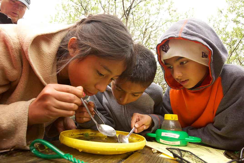 biocube, school children