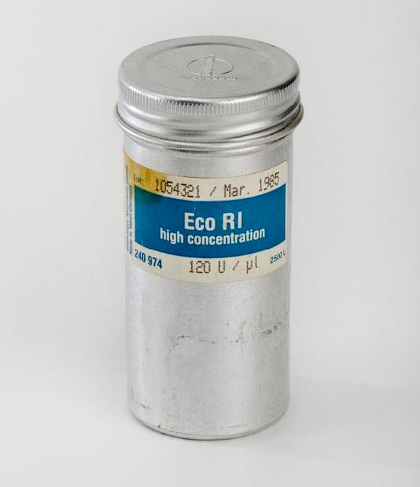 container for Eco R1