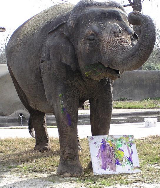 Bozie paints a picture!