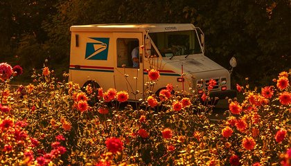 A Brief History of the United States Postal Service image